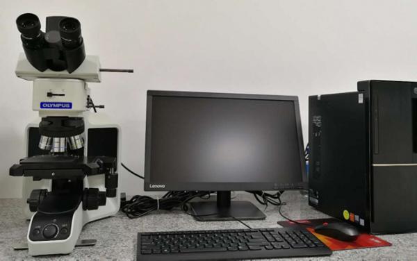 Olympus显微镜